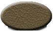 Tan 656
